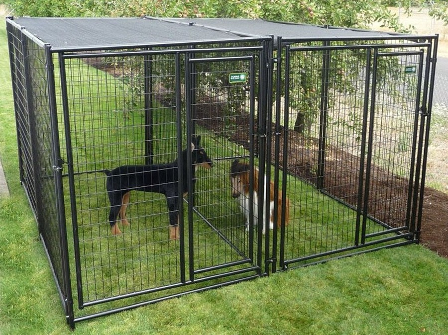 The Easiest Way To Make A Dog Fence Smart Deco Furniture